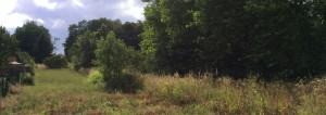 terrain_Pontamousson